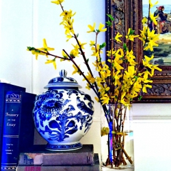 Blooming-forsythia-on-mantel