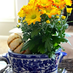 Blue-and-white-planter
