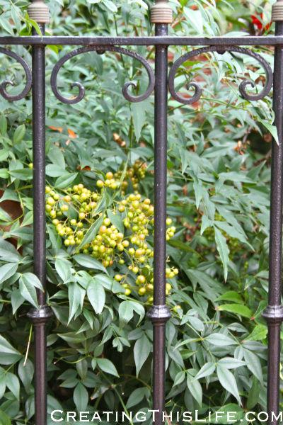 DC fall railing