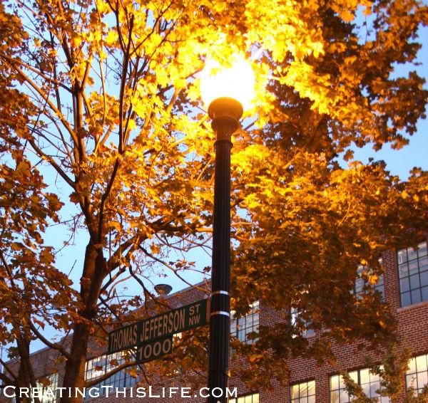 Georgetown street fall