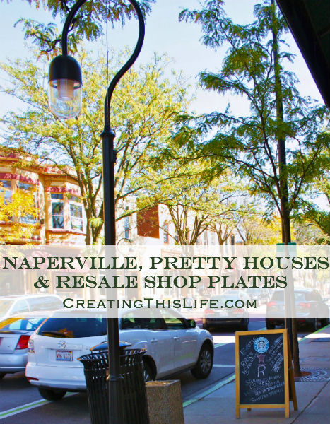 Naperville Houses and Resale Shop