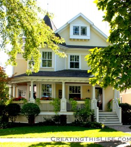 Naperville, Pretty Houses and Resale Shop Plates
