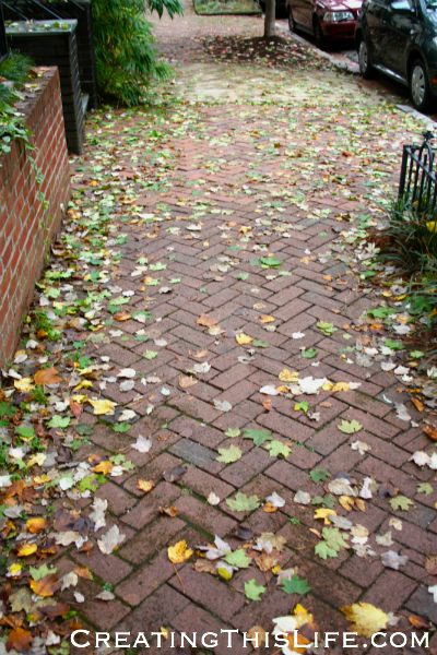 georgetown brick sidewalk