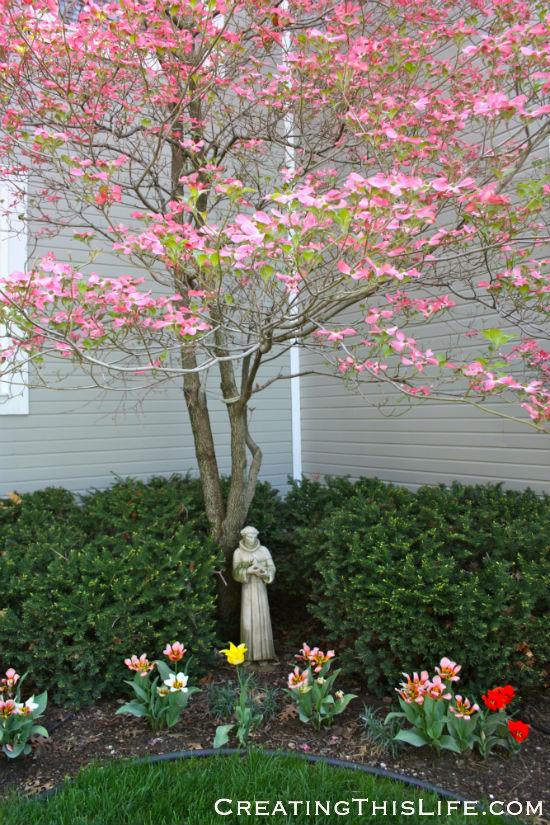 Pink Dogwood at CreatingThisLife.com