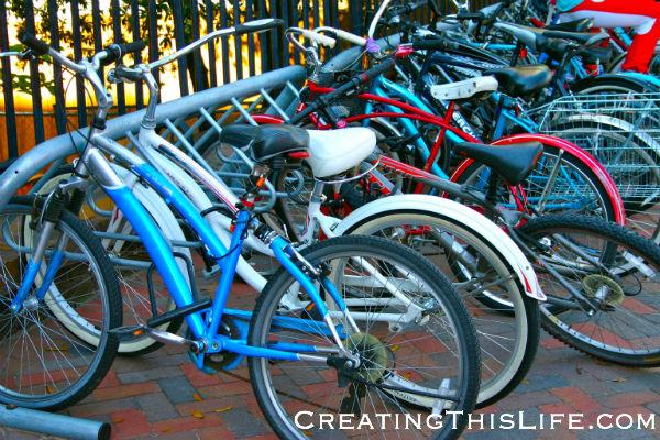Savannah Bikes