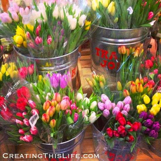 Trader Joe's Tulips