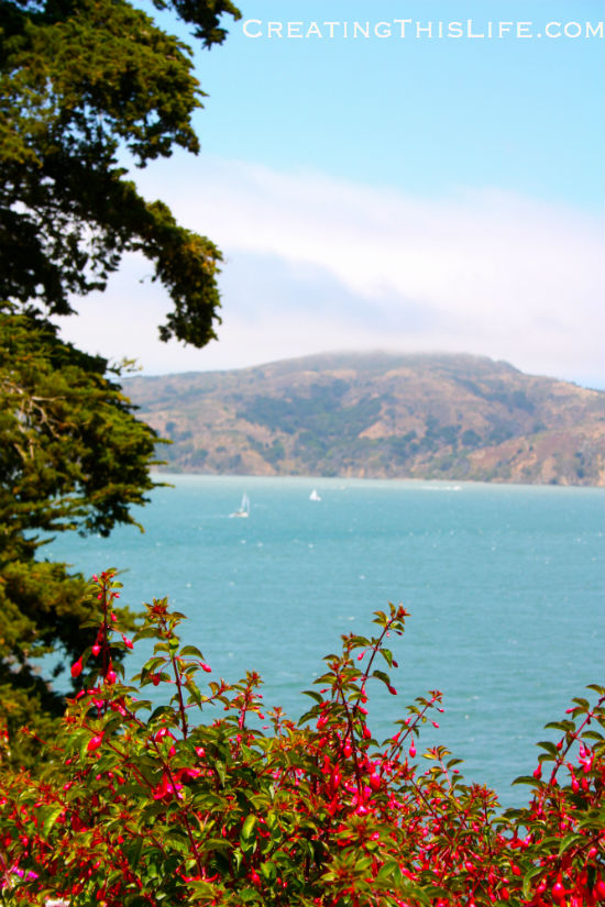 San-Francisco-Bay-View-from-Alcatraz