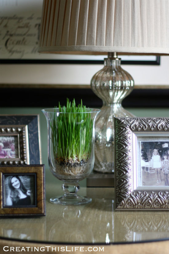easter-grass-in-clear-footed-vase