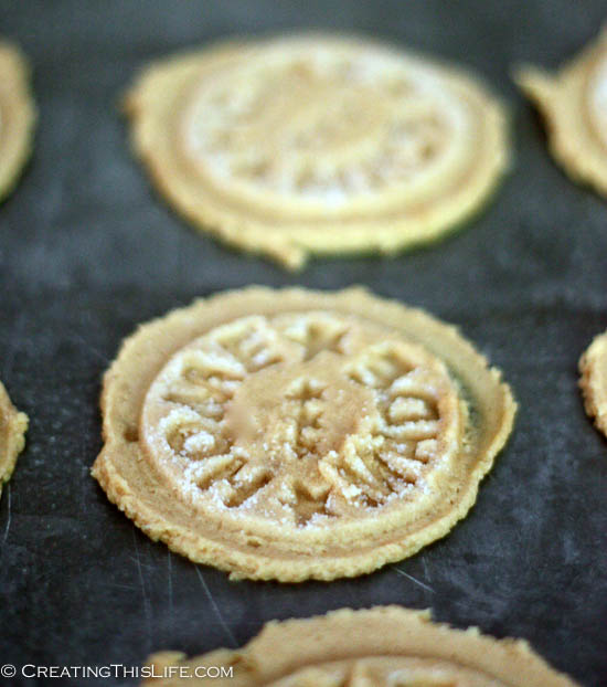 Home Made Peanut Butter Cookies with Stamp