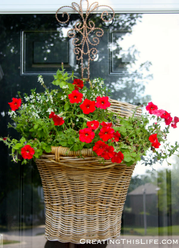 Red Petunias in basket on front door