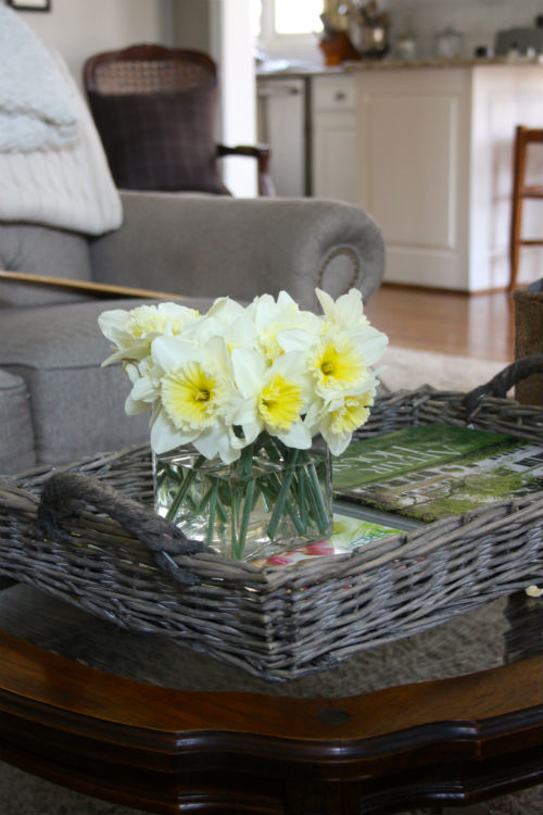 Daffodils at CreatingThisLife.com