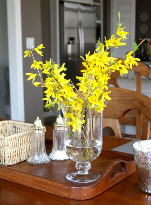 Forsythia at CreatingThisLife.com