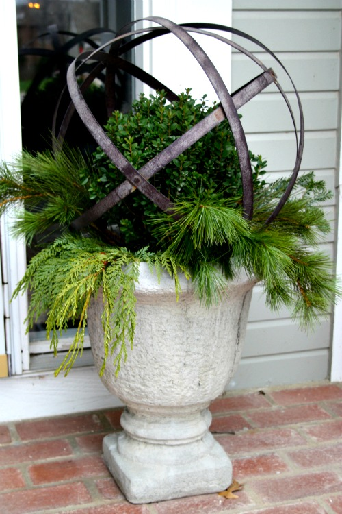 Boxwood and Christmas greens in urn