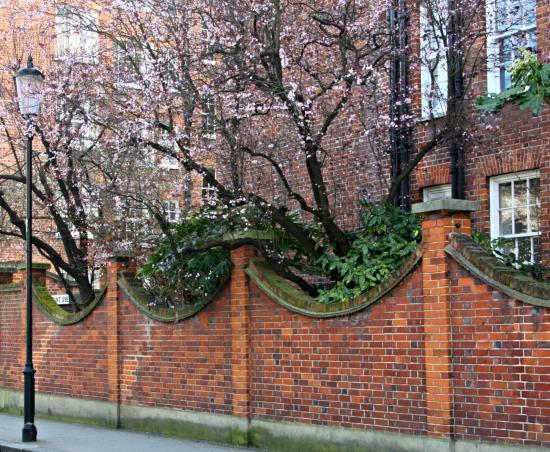 London Springtime Street