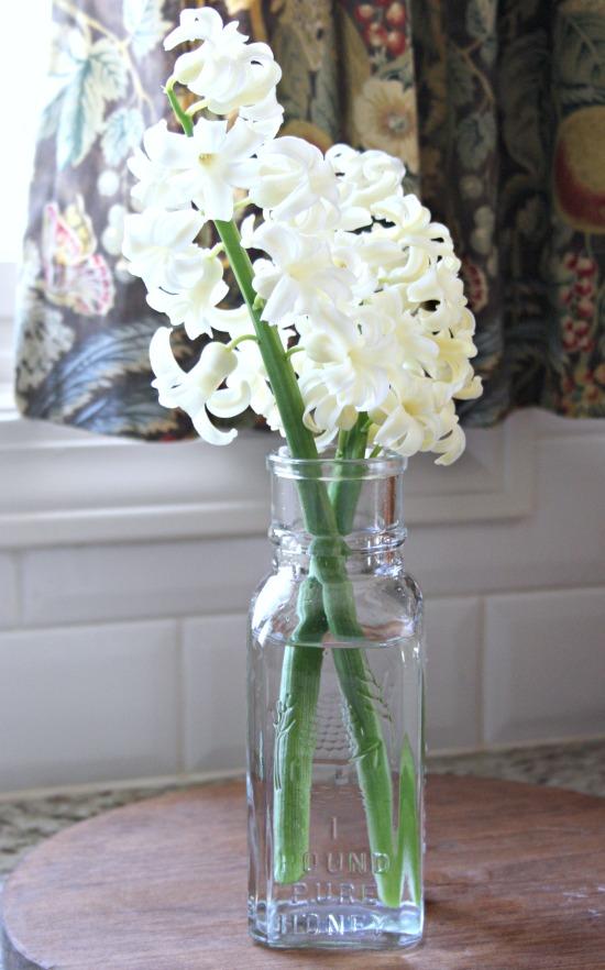 White Hyancinth in Honey Jar